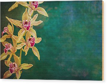 Orchids Wood Print