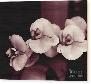 Wood Print featuring the photograph Orchids Hawaii by Mukta Gupta