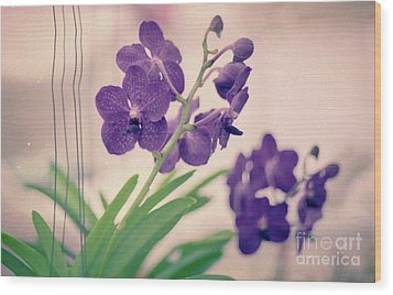 Wood Print featuring the photograph Orchids In Purple  by Ana V Ramirez