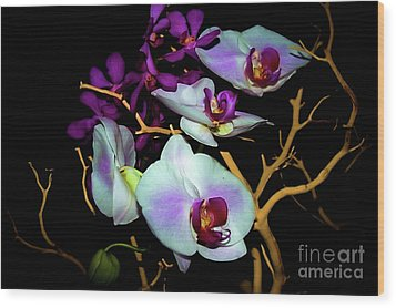 Wood Print featuring the photograph Orchids In Water Color by Diana Mary Sharpton