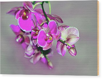 Wood Print featuring the photograph Orchids On Gray by Ann Bridges