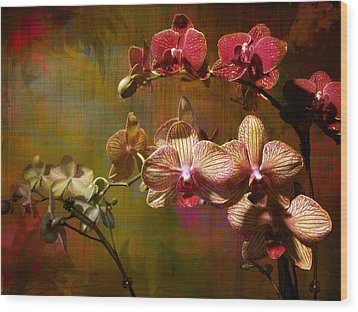 Wood Print featuring the photograph Orchids On Silk by John Rivera