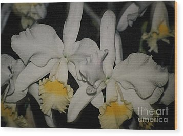 Wood Print featuring the photograph Orchids Satin by The Art of Alice Terrill