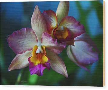Orchids - Trio Wood Print by Kerri Ligatich