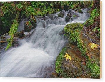 Wood Print featuring the photograph Oregon Cascade by Jonathan Davison