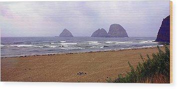 Oregon Coast 1 Wood Print by Marty Koch