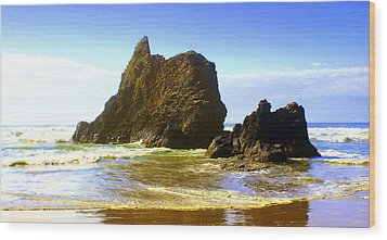 Oregon Coast 13 Wood Print by Marty Koch