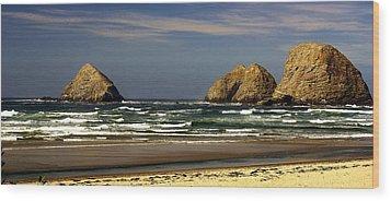Oregon Coast 14 Wood Print by Marty Koch