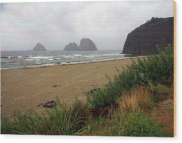 Oregon Coast 2 Wood Print by Marty Koch