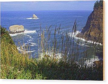 Oregon Coast 4 Wood Print by Marty Koch