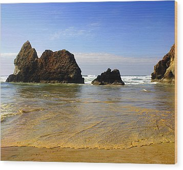 Oregon Coast 9 Wood Print by Marty Koch