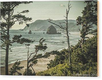 Oregon Coast At Sunset Wood Print