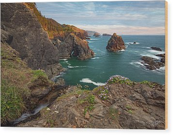 Wood Print featuring the photograph Oregon Coastal Scenic by Leland D Howard