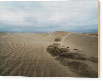 Wood Print featuring the photograph Oregon Dune Wasteland 1 by Ryan Manuel