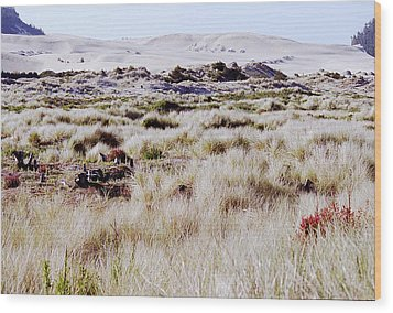 Oregon Dunes 6 Wood Print by Eike Kistenmacher
