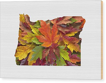Oregon Maple Leaves Mixed Fall Colors Background Wood Print