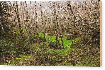 Oregon Rainforest Wood Print