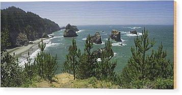 Oregon Seascape Wood Print by Rob Wilson