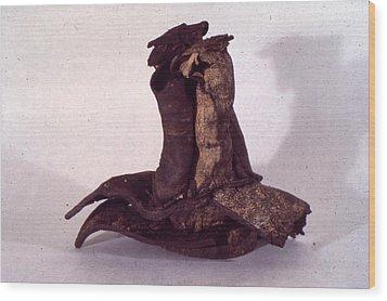 Organic Ceramic 1977 Wood Print by Ron Hayes
