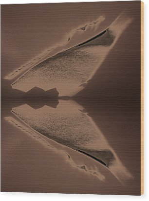 Organic Details Near That Strongly-held Dividing Line 2015 Wood Print by James Warren