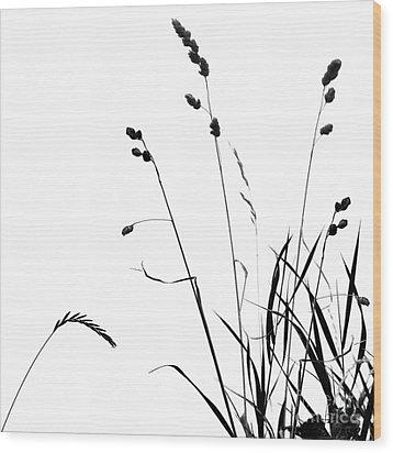 Organic Enhancements 10 Wood Print