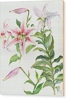 Oriental Lily Mona Lisa Liliaceae Wood Print by Sandra Phryce-Jones