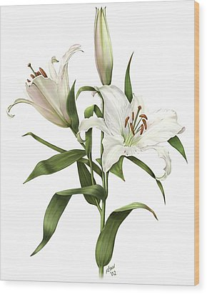 Oriental Lily Siberia Wood Print