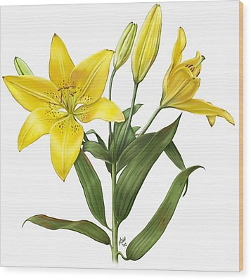 Oriental Lily Yellow Wood Print