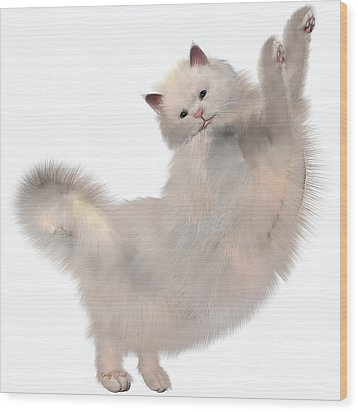 Oriental White Cat Wood Print by Corey Ford