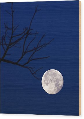 Ornament Wood Print by Alan Raasch