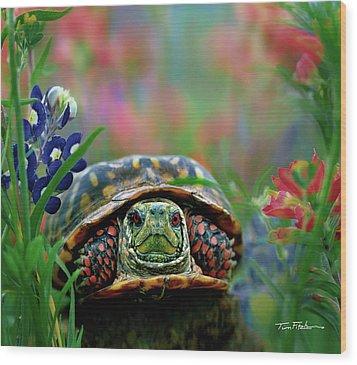 Ornate Box Turtle Wood Print