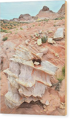 Wood Print featuring the photograph Ornate Rock In Wash 4 Of Valley Of Fire by Ray Mathis