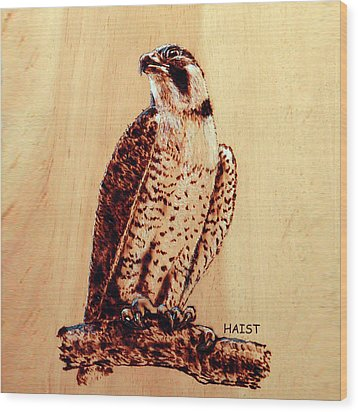 Osprey 2 Pillow/bag Wood Print by Ron Haist