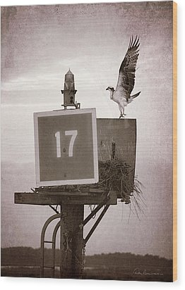 Osprey Landing On Channel Marker 17 Wood Print by Dan Beauvais