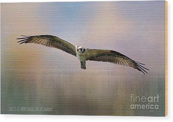 Osprey Over The Shenandoah Wood Print