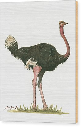 Ostrich Bird Wood Print by Juan Bosco