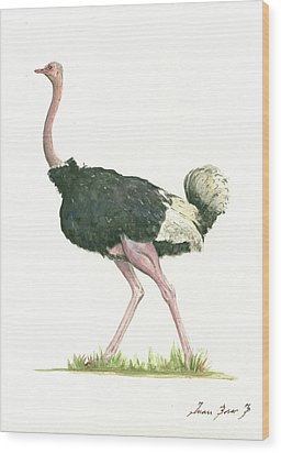 Ostrich Wood Print by Juan Bosco