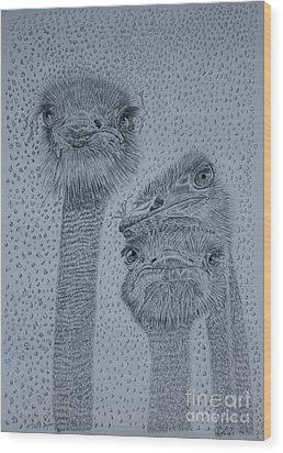 Ostrich Umbrella Wood Print