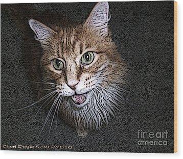 Otis The Orange Kitty Wood Print by Cheri Doyle