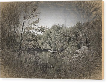 Otter Creek  Wood Print by Rena Trepanier