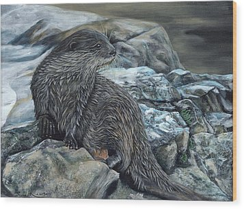 Otter On Rocks Wood Print