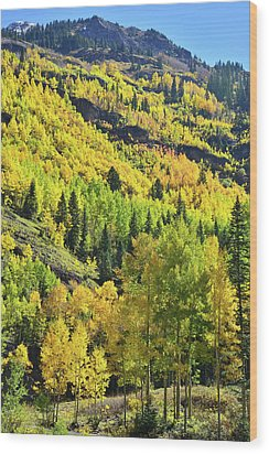 Wood Print featuring the photograph Ouray Canyon Switchbacks by Ray Mathis