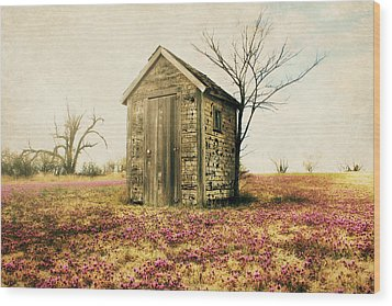 Wood Print featuring the photograph Outhouse by Julie Hamilton