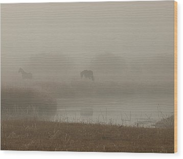 Out In The Fog Wood Print by DeeLon Merritt