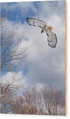 Out Of The Blue Wood Print by Bill Wakeley