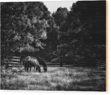 Wood Print featuring the photograph Out To Pasture Bw by Mark Fuller