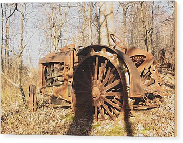 Out To Pasture Wood Print by Diane Merkle