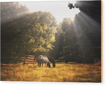 Wood Print featuring the photograph Out To Pasture by Mark Fuller