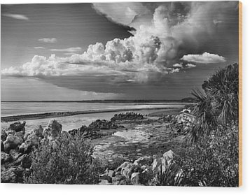 Wood Print featuring the photograph Out To Sea by Howard Salmon
