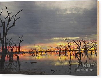 Outback Sunset Wood Print by Blair Stuart